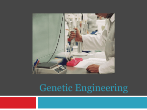 Genetic Engineering - Effingham County Schools