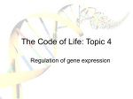 The Code of Life: Topic 3