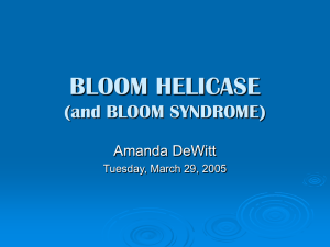 BLOOM HELICASE (and BLOOM SYNDROME)