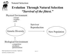 "Evolution Through Natural Selection ""Survival of the fittest."""