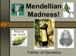 Mendellian Madness! - Effingham County Schools