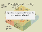 Probability and Heredity 2013