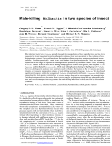Male-killing i n two species of insect Wolbachia 1~ THE ROYAL