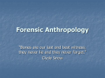 Forensic Anthropology - Bryn Mawr School Faculty Web Pages