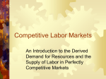 Competitive Labor Markets