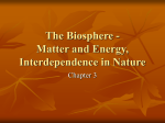 The Biosphere - Matter and Energy, Interdependence in Nature