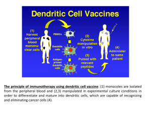 The principle of immunotherapy using dendritic