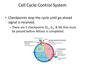 Cell Cycle Control System - Santa Susana High School