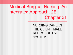 Medical-Surgical Nursing: An Integrated Approach, 2E Chapter 31
