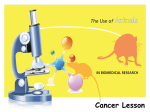 The use of animals in research: Cancer lesson
