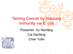 Taming Cancer by Inducing Immunity via E. coli