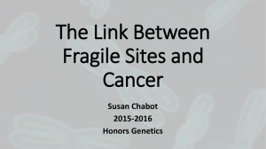 Fragile Sites and Cancer Powerpoint