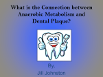 The Connection between Anaerobic Metabolism and Dental Plaque