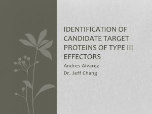 Identification of candidate target proteins of type III effectors