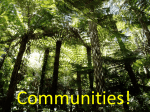 Communities L1 ppt