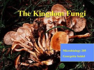 FUNGI - Pima Community College : Home