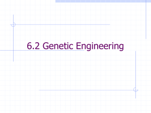 6.2 Genetic Engineering