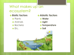 What makes up an ecosystem? - Burnet Middle School