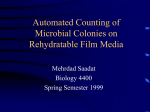 Automated Counting of Microbial Colonies on Rehydratable Film