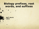 biology prefix suffix ppt 2015