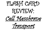 FLASH CARD REVIEW: Cell Membrane Transport