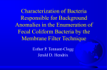 Characterization of Bacteria Responsible for Background Anomalies