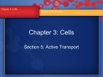 Chapter 3: Cells