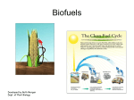Environmental challenges: Biofuels
