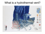 What is a hydrothermal vent?