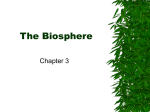 Biology Chapter 3 (The Biosphere)