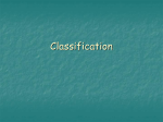 the seven levels of classification.