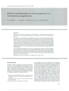 Effects of transformation on the hemagglutinins of Haemophilus paragallinarum L. R.R.  BRAGG