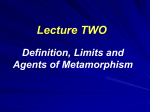 Lecture notes on Metamorphic Petrology