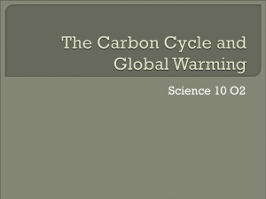The Carbon Cycle and Global Warming