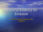 Historical Evidence for Evolution #2