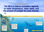 Marine Zones The life in a marine ecosystem depends on water