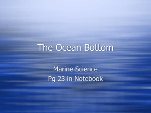 The Ocean Bottom