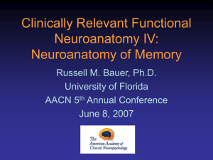 Clinically Relevant Functional Neuroanatomy