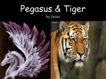 Pegasus & Tiger by, Jesus Frias