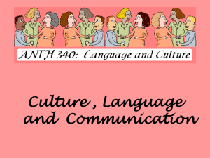 340-Culture-and-Communication