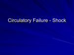 Circulatory Failure - Shock