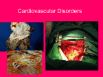 Cardiovascular Disorders/homeostatic Imbalances
