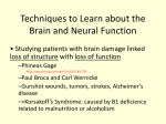 Techniques to Learn about the Brain and Neural Function