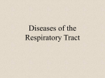 Diseases of the Respiratory Tract