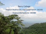 Tropical Biodiversity (BIO383) Tropical Biomedicine (BIO480)