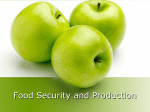 Food Security and Production