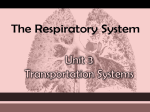 The RESPIRATORY System - Davis School District