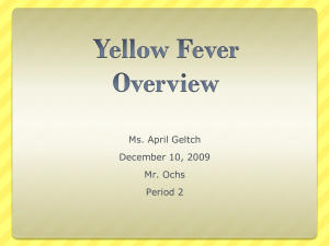 Ms. Geltch Yellow Fever PPT