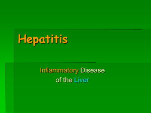 H.D.Hepatitis.spring.10 hepatitis1