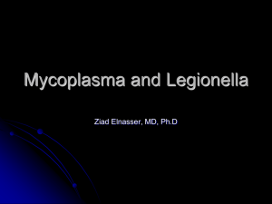 Mycoplasma and Ureaplasma